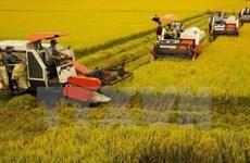 L'agriculture vietnamienne affiche ses ambitions
