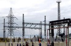 L'Allemagne aide le Vietnam à exploiter son potentiel de la biomasse