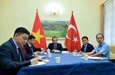 Vietnam-Turquie: entretien téléphonique de vice-ministres des Affaires étrangères