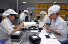 Le ministère de l'Industrie et du Commerce promulgue une circulaire sur les règles d'origine dans l'EVFTA