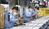 Redressement du marché du travail