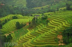 Les associations coopèrent pour promouvoir le tourisme local