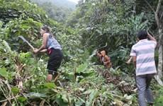 Le COVID-19 augmente la pauvreté transitoire au Vietnam