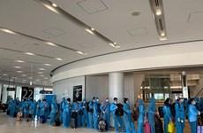 COVID-19 : plus de 190 Vietnamiens rapatriés du Japon