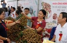 Hung Yên intensifie la promotion de ses produits agricoles