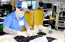 De nombreuses entreprises taïwanaises choisissent Dong Nai