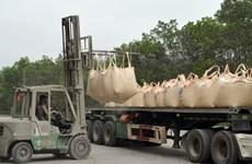 Exportations de 19,5 millions de tonnes de ciment et clinker en 7 mois