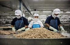 Thon et crevette du Vietnam très populaires aux Etats-Unis et en UE