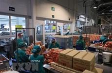 Les entreprises vietnamiennes laissent une bonne impression malgré le COVID-19