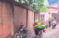 La palanche des marchands ambulants : un emblême de Hanoï