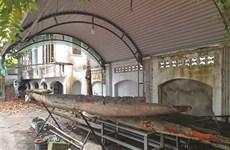 Quang Ninh : Un musée et ses 22 pirogues monoxyles
