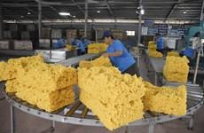 Les ventes de produits en caoutchouc en Pologne en forte hausse