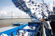 Le riz vietnamien s'insère au marché européen