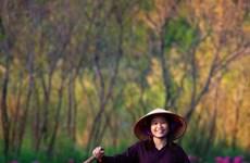 Explorer le Vietnam à travers de magnifiques œuvres photographiques