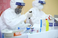 Coronavirus : le Vietnam ne rapporte aucun nouveau cas local à la 25e journée