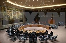 Le Vietnam soutient les efforts conjoints de l'ONU et de l'UA pour promouvoir la paix en Afrique