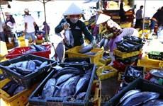 Un atelier cherche des solutions de promouvoir les exportations de thon vers l'UE
