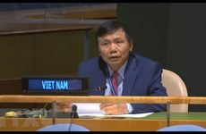 ONU : le Vietnam s'engage à contribur activement au maintien de la paix de de la Quatrième Commission