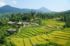 Trek d'exception dans le village de Ban Liên à Lào Cai