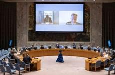 Le Vietnam et l'Indonésie appellent à des solutions pacifiques au problème d'Abyei