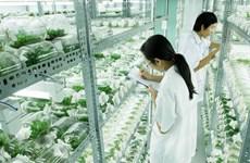 Thai Nguyen renforce une coopération agricole de haute technologie avec Israël