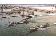 Thua Thiên-Huê : Entre terre et mer, le marais de Chuôn
