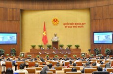 Le développement socio-économique national en débat parlementaire