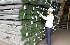 Les mesures de défense commerciale touchent 12 mds de dollars d'exportations vietnamiennes