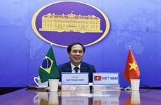 Consultation politique Vietnam-Brésil
