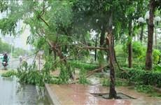 Le typhon Etau fait deux morts dans la région du Centre
