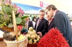 Le delta du Mékong attire de plus en plus d'investisseurs étrangers