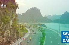Marathon : 2.500 athlètes suivent la ligne bleue et embrassent Ha Long