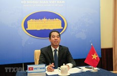 Consultation politique Vietnam-Kazakhstan au niveau de vice-ministre