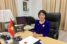 L'ambassade du Vietnam à Singapour publie une vidéo du Gala de l'ASEAN 2020