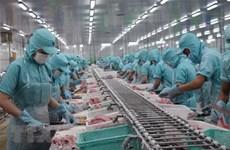 La valeur des exportations de poisson Tra atteint 1,2 milliard de dollars en 10 mois