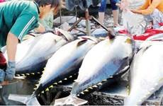 Produits aquatiques: L'UKVFTA stimulera les exportations vietnamiennes vers le marché britannique