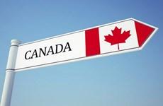 Bond des exportations vietnamiennes vers le Canada en 11 mois