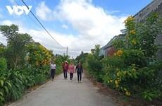 Les villages des Hauts Plateaux du Centre font peau neuve