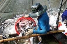 Les exportations des produits aquatiques augmentent de 2,2% en deux mois