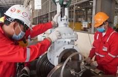 Le groupe PetroVietnam s'efforce de maintenir ses activités