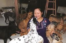 De bons samaritains de la cause animale