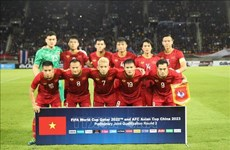Le Vietnam disputera les éliminatoires de la Coupe du Monde aux EAU