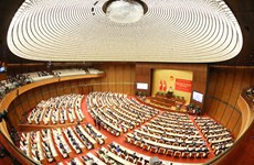 Conférence nationale en ligne sur la Résolution du 13e Congrès national du Parti