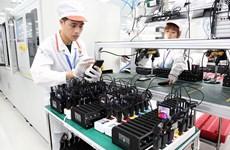 Le vice-PM Vu Duc Dam souligne l'importance des sciences et technologies