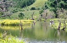 Belle randonnée vers le lac de montagne Noong U à Diên Biên
