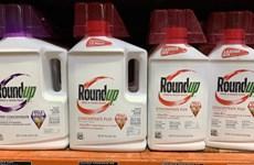 Procès du Roundup : une condamnation de Monsanto confirmée en appel en Californie
