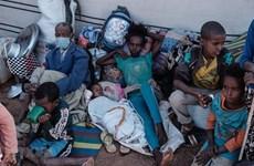 Le Vietnam appelle à lutter contre la faim en Éthiopie
