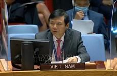ONU : le Vietnam appelle à la sécurité pour les élections en Iraq