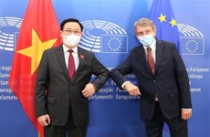 Le président de l'Assemblée nationale s'entretient avec le président du Parlement européen