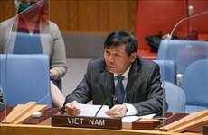 ONU : le Vietnam appelle les parties concernées au Yémen à reprendre le dialogue